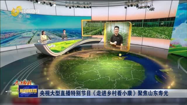 央视大型直播特别节目《走进乡村看小康》聚焦山东寿光
