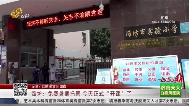 """潍坊:免费暑期托管 今天正式""""开课""""了"""