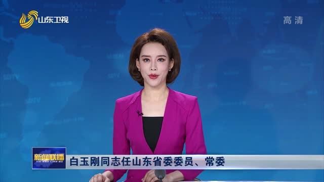 白玉刚同志任山东省委委员、常委
