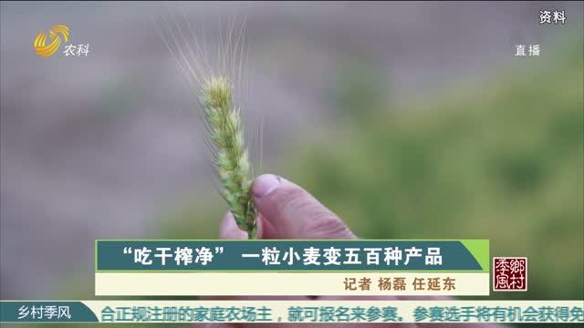 """""""吃干榨凈""""一粒小麥變五百種產品"""