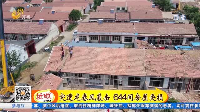 东营:龙卷风过后党员群众救灾忙