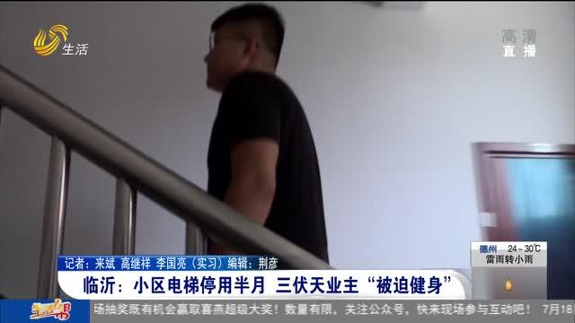 """临沂:小区电梯停用半月 三伏天业主""""被迫健身"""""""