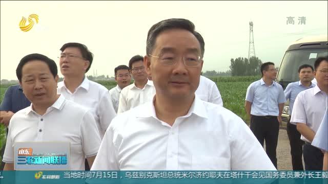 【三農要聞】農業農村部部長唐仁健到淄博調研