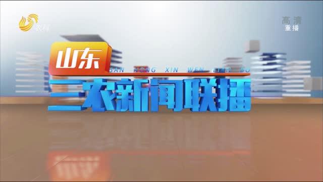 2021年07月16日山東三農新聞聯播完整版