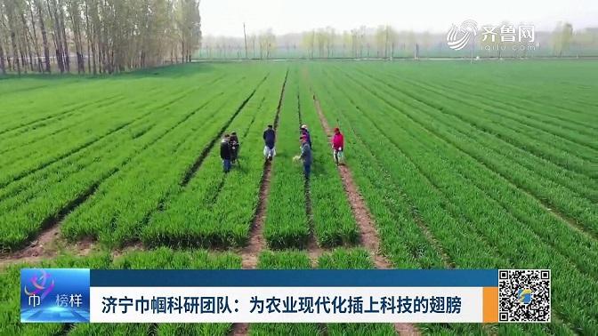 濟寧巾幗科研團隊:為農業現代化插上科技的翅膀
