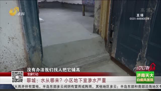 【安家行動】聊城:水從哪來?小區地下室滲水嚴重