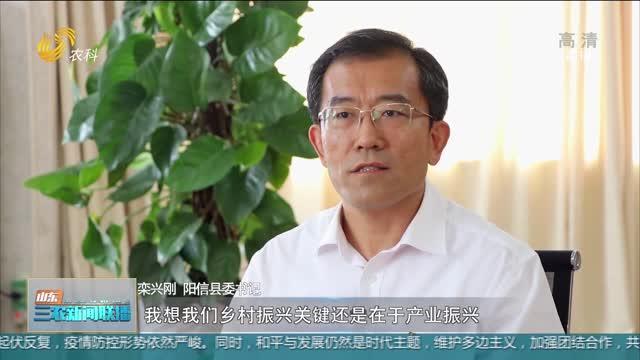 """【對話鄉村振興""""一線總指揮""""】欒興剛:打造名副其實的""""中國第一??h"""""""