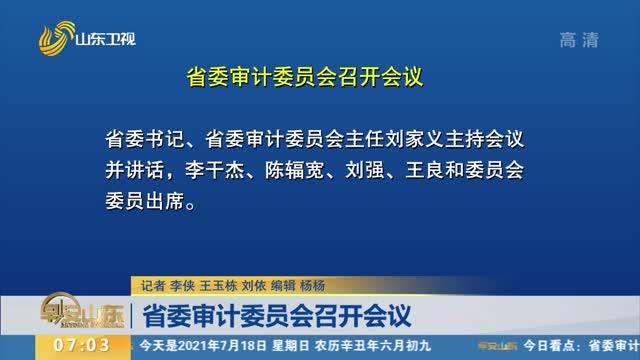 省委審計委員會召開會議