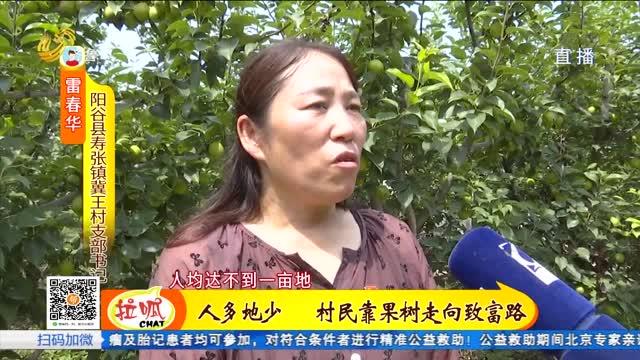 """阳谷县冀王村:从""""苹果之乡""""到""""水果之乡"""""""