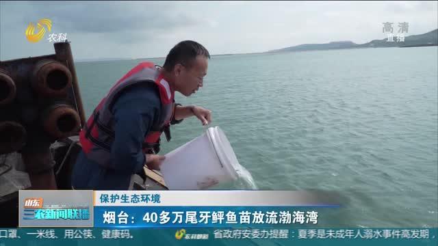 【保護生態環境】煙臺:40多萬尾牙鲆魚苗放流渤海灣