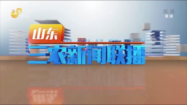 2021年07月18日山東三農新聞聯播完整版