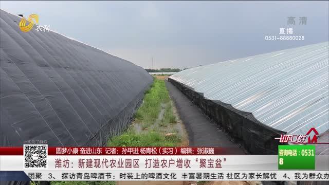 """【圆梦小康 奋进山东】潍坊:新建现代农业园区 打造农户增收""""聚宝盆"""""""