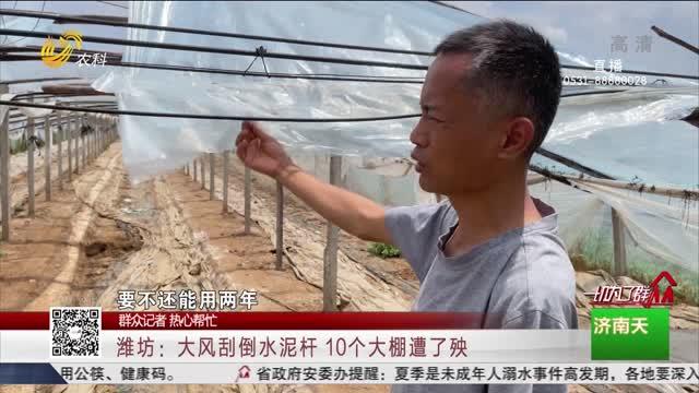 【群众记者 热心帮忙】潍坊:大风刮倒水泥杆 10个大棚遭了殃