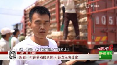 新泰:打造养殖联合体 引领农民快致富