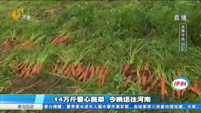 【直播连线】兰陵爱心人士捐赠10万斤蔬菜