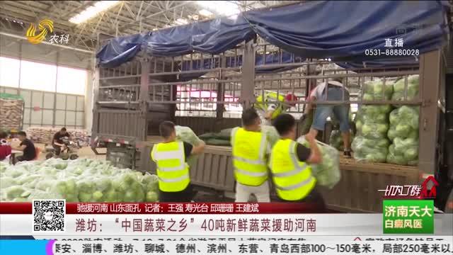 """【驰援河南 山东面孔】潍坊:""""中国蔬菜之乡""""40吨新鲜蔬菜援助河南"""