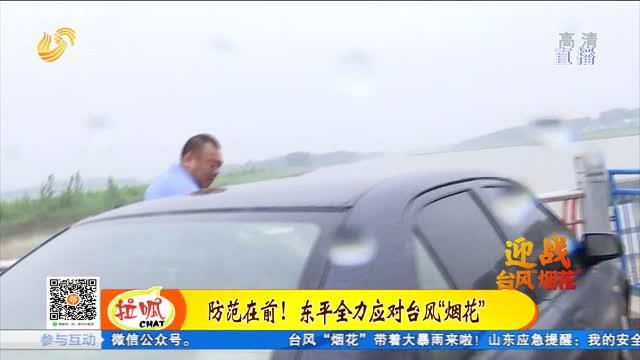"""迎战台风""""烟花"""":东平湖调控闸门 全力应对暴雨"""