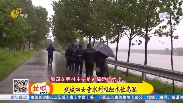 德州武城:四女寺水利枢纽水位高涨 党员带头应急防汛