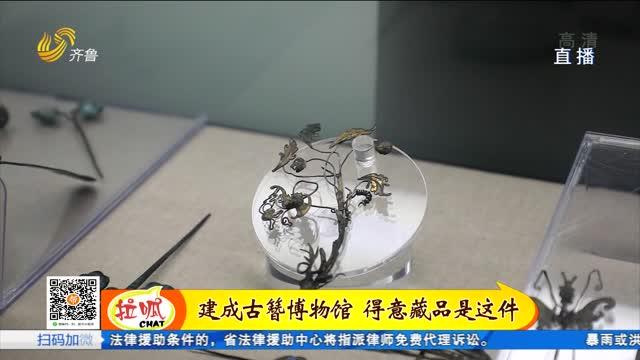 菏泽:收藏千余支古发簪 自办博物馆传播传统文化