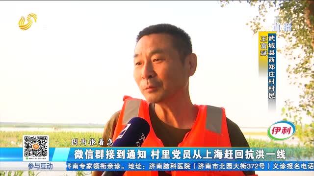 微信群接到通知 村里党员从上海赶回抗洪一线