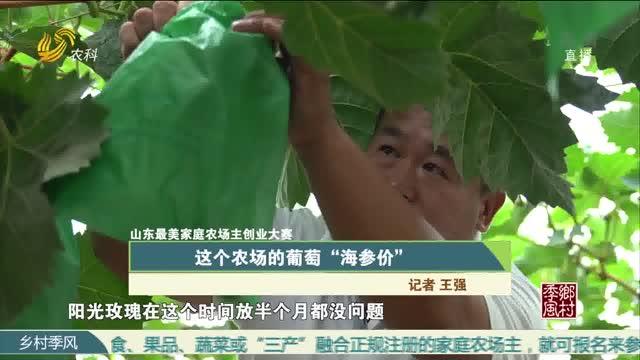 """【山东最美家庭农场主创业大赛】这个农场的葡萄""""海参价"""""""