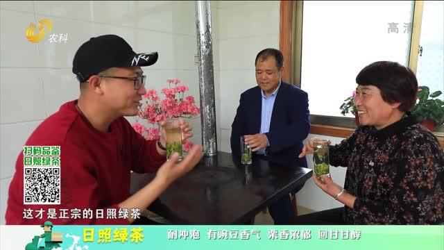 20210805《中国原产递》:日照绿茶