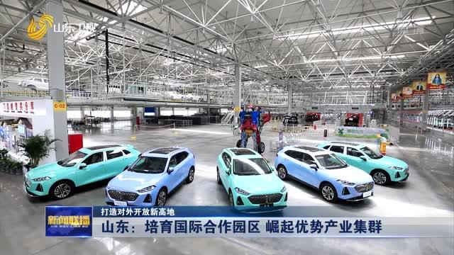 【打造对外开放新高地】山东:培育国际合作园区 崛起优势产业集群