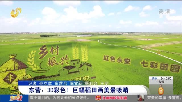 东营:3D彩色!巨幅稻田画美景吸睛