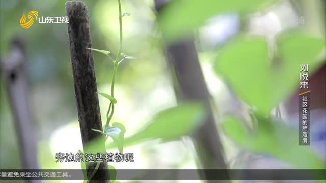 20210814完整版|刘悦来:社区花园的缔造者