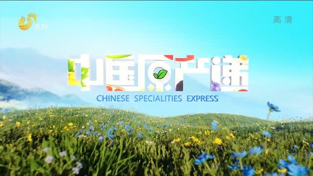 20210816《中国原产递》:全熟洋槐蜂蜜