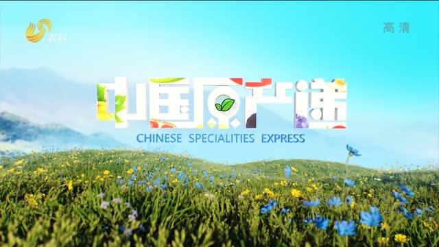 20210818《中国原产递》:山药粉皮