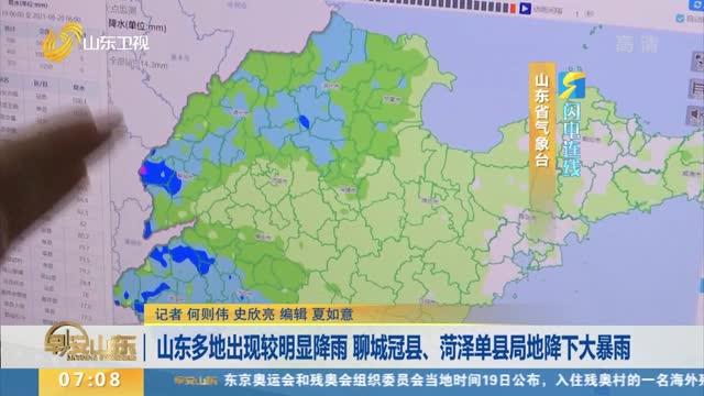 【闪电连线】山东多地出现较明显降雨 聊城冠县、菏泽单县局地降下大暴雨