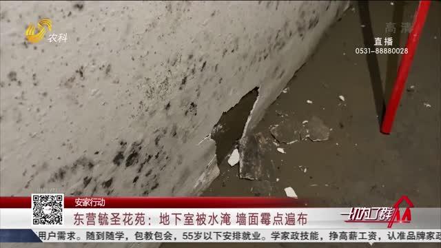 【安家行动】东营毓圣花苑:地下室被水淹 墙面霉点遍布