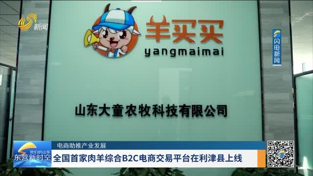 【电商助推产业发展】全国首家肉羊综合B2C电商交易平台在利津县上线