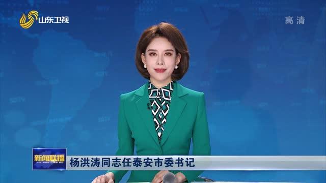 杨洪涛同志任泰安市委书记