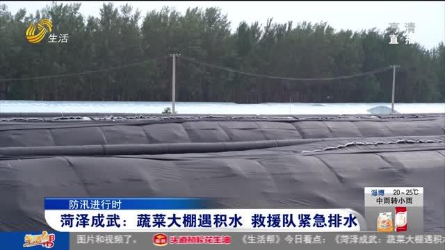 【防讯进行时】菏泽成武:蔬菜大棚遇积水 救援队紧急排水