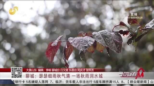 【大美山东】聊城:瑟瑟细雨秋气清 一场秋雨润水城