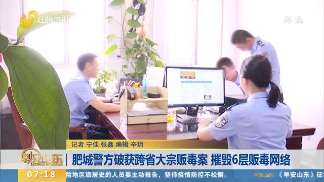 肥城警方破获跨省大宗贩毒案 摧毁6层贩毒网络
