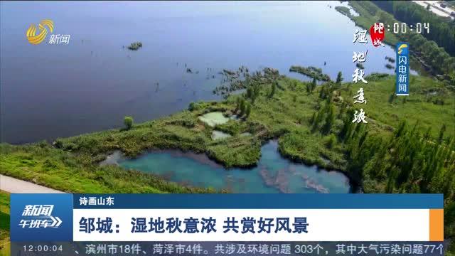 【诗画山东】邹城:湿地秋意浓 共赏好风景