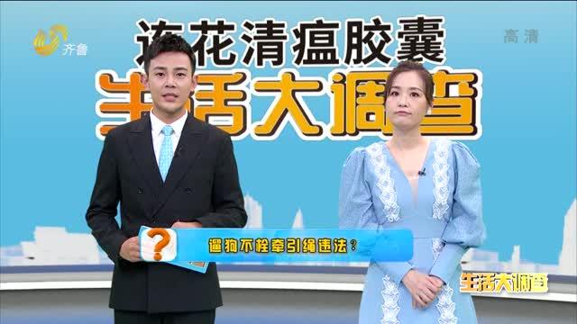 2021年09月11日《生活大调查》:遛狗不拴牵引绳违法?