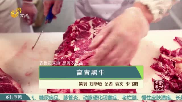 【齐鲁灵秀地 品牌农产品】高青黑牛