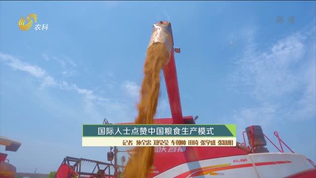 国际人士点赞中国粮食生产模式