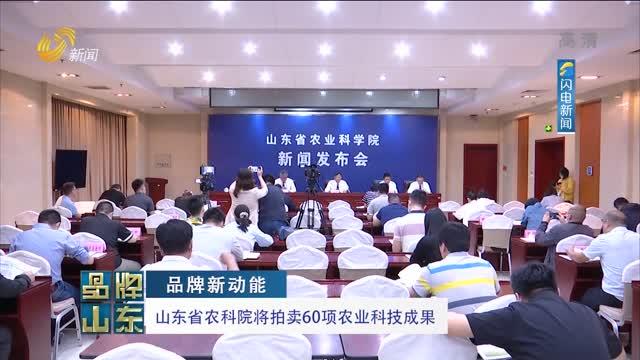 【品牌新动能】山东省农科院将拍卖60项农业科技成果