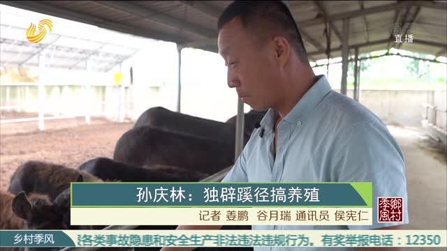 孙庆林:独辟蹊径搞养殖