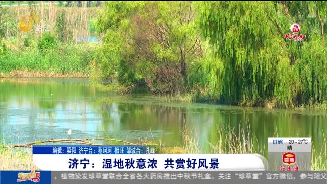 济宁:湿地秋意浓 共赏好风景