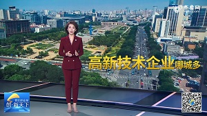 40城高新技术企业数量排行:青岛、济南位列14、19