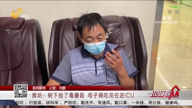 【新闻聚焦】潍坊:树下捡了毒蘑菇 母子俩吃完住进ICU