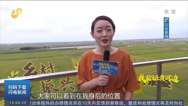 """【我家住在黄河边】3D稻田画频频登上热搜!垦利""""稻蟹混养"""" 新农民获得感满满"""