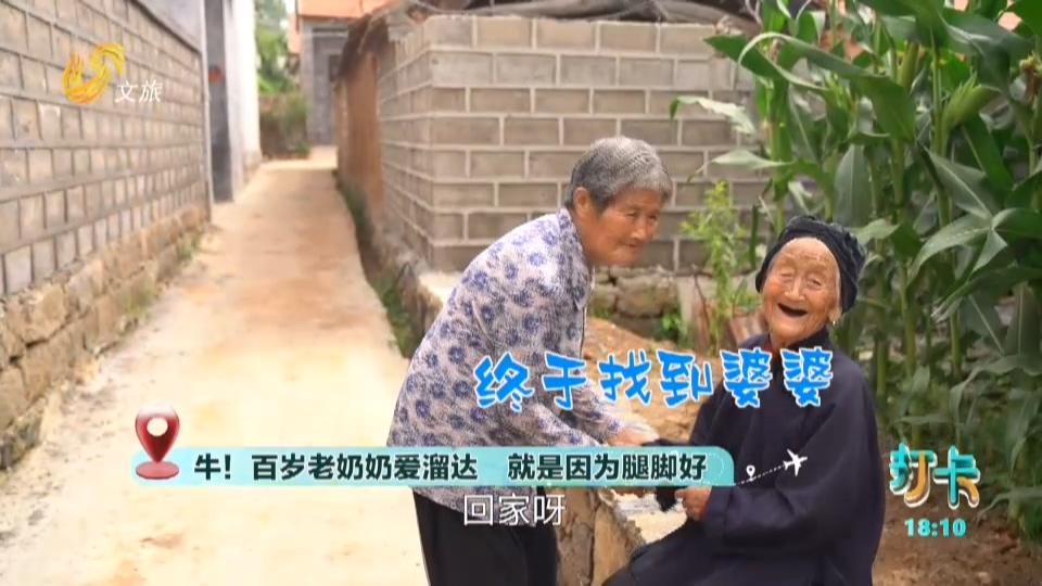 奇!百岁奶奶离家   急坏儿媳妇