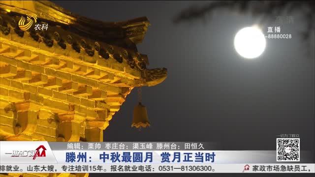 滕州:中秋最圆月 赏月正当时